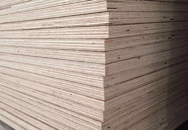 为什么大多数胶合板会选择杨木材质?